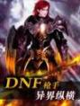 DNF枪手异界纵横